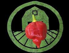 20+ Trinidad Scorpion Pepper Seeds (hot organic chili, chile)