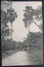 COCHINCHINE - Gia-Dinh - La route aux deux Palmiers - Collection Poujade