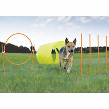 Kyjen Outdoor Dog Agility 9-Piece Starter Kit with Dog Tunnel Weave