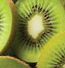 10 KIWI  FRUIT SEEDS ( FRUITS SEEDS)