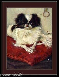 English Picture Print Japanese Chin Spaniel Dog #2 Art