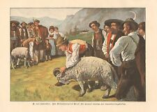 Tyrolian Sheep Farmers, Sheep Show, Vintage, 1900 German Antique Art Print