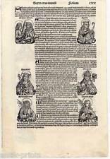Heilige Apollonia-Zahnarzt-Holzschnitt aus Schedel 1493 Papst-Päpste