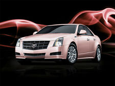 2010 Cadillac CTS, MARY KAY PINK, Refrigerator Magnet, 40 MIL