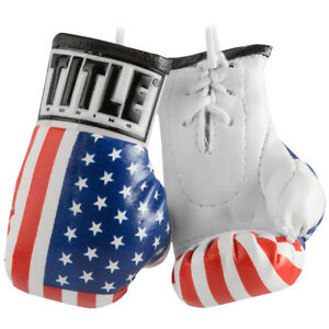 """Title Boxing 3.5"""" Authentic Detailed Mini Lace Up Gloves"""