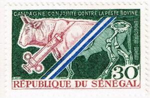 Senegal Cow Farm Veterenarian stamp 1967 MLH
