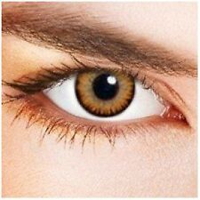 lentilles de couleur marron  1 an - contact lenses