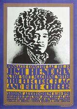 Jimi Hendrix Pinnacle Shrine Auditorium 1968 Concert Poster