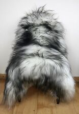 XL Large Black Tip on White/Ivory/Cream Genuine Icelandic Real Fur Sheepskin Rug