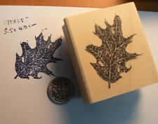 "Beautiful Fall Leaf  rubber stamp WM 1.5x1.4"" P25"