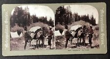 "Vintage Stereo-View Stereoscopic Photo: #A106: ""Cinching"" The Load"