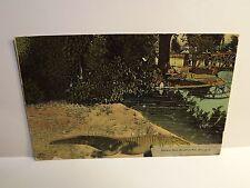 1915 Dayton Ohio Alligator Pool Antique Postcard