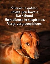 METAL MAGNET Silence Golden Have Dachshund Suspicious Very Very Humor Dog