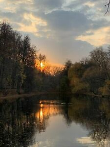 Photo Picture Russia Gorkiy Park Pond Sunset Moscow