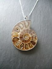 Ammonite Fossil Pendant 925 Sterling Silver Chain Necklace Energy Shifter Gift