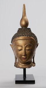 """Antique 19th Century Burmese Shan Gold Lacquer Buddha Head - 37cm/15"""""""