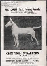 Vintage Litho 1920-30'S Helter Skelter Bull Terrier Dog Chepping London England