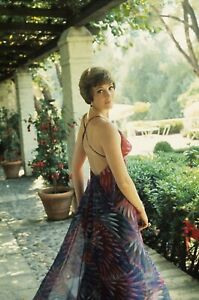 """The Julie Andrews Hour TV 8X10"""" Photo #Y103"""