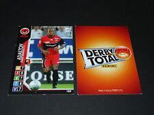 ADAILTON STADE RENNAIS RENNES ROAZHON PANINI FOOTBALL CARD 2004-2005