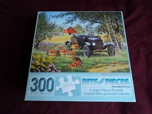 """Bits and Pieces 300 Piece Jigsaw Puzzle Complete Large Pieces """"Pick your Own"""""""