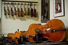 Violin Making Repairing Restore CD-ROM 45 Books Restoration Fiddle Viola Varnish