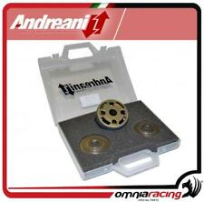 Andreani Edit to mono OEM piston+spring+lamellas Ducati Hyperstrada 821 13>14
