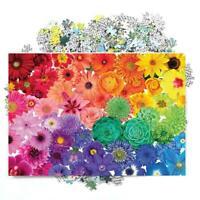 1000 Piece Rainbow Flowers Jigsaw Puzzles Adults Learning Education Jigsaw V6O8