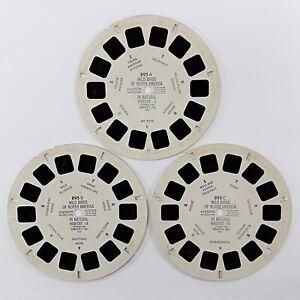 Wild Birds Of North America - Vintage View-Master Reel Set 895 (895A 895B 895C)