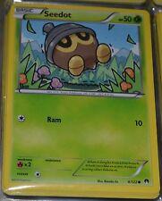 Seedot # 4/122 XY Breakpoint Set Pokemon Trading Cards Break Point Grass MINT