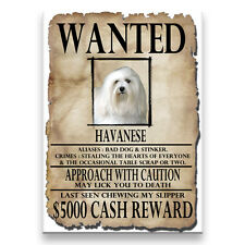 Havanese Wanted Poster Fridge Magnet No 1 Dog