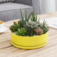 Decor Round Yellow Ceramic Succulent Planter/Flower Pot with Removable Saucer