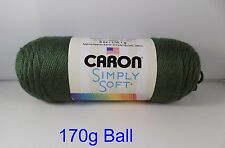 Caron Simply Soft 170g Knitting 60 Colors by Woolexpress DK Sage