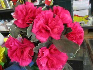 Abbott Magic Fresh Carnation Bouquets (2) Production Feather Flowers