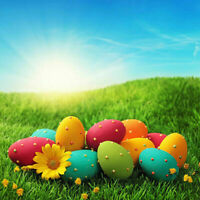 2MX2M Vinyl Photography Decor Background Easter Eggs Props Photo Studio Backdrop
