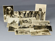 c1924 | Capt BUCHANAN | set of 12 RPPCs SAHARA expedition | TUAREG africa RARE