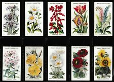 """Wills Cigarette Cards """"Old English Garden Flowers"""" 1911 Complete Set Cat Val £75"""