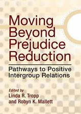 Moving Beyond Prejudice Reduction: Pathways to Positive Intergroup Relations by