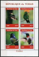 Chad 2019 MNH Hummingbirds Hummingbird 4v M/S Colibri Birds Stamps
