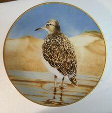 "Collector Water Bird Plate Eric Tenney SAND PIPER 24K gold rim Porcelain 9 1/2"""