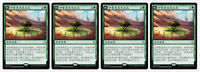 4 Chinese Growing Rites of Itlimoc Ixalan XLN Magic the Gathering MTG MINT