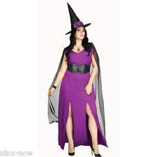 Midnight Magic Plus Size Women's Witch Halloween Costume