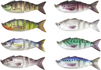 Lunkerhunt Gambit 4 1/2 inch Soft Body Swimbait Bass & Multi-Species Swimbait