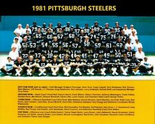1981 PITTSBURGH STEELERS 8X10 TEAM PHOTO FOOTBALL PICTURE NFL