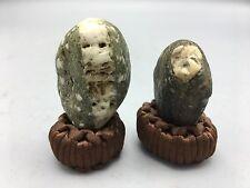 U1 Natural polished Viewing stone suiseki-Pacific coast pair figure rough