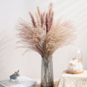Trockenblumen Natürliche Bouquet Reed Flores Pampas Weizen Ohren Setaria Deko-