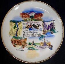 "vintage U.S State Souvenir Plate Colorful Colorado Large 10"""