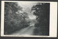 Postcard Millaford Bridge nr Lyndhurst New Forest Hampshire