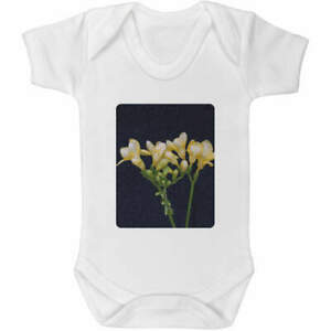 'Yellow Flowers' Baby Grows / Bodysuits (GR081952)