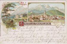 75173/57- Gruss aus Saalfelden Bezirk Zell am See Salzburg um 1905