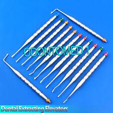 Set Of 13 Pcs Dental Root Tip Extracting Elevators Instruments